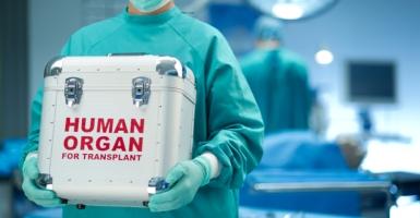 organ-donation-transplantation