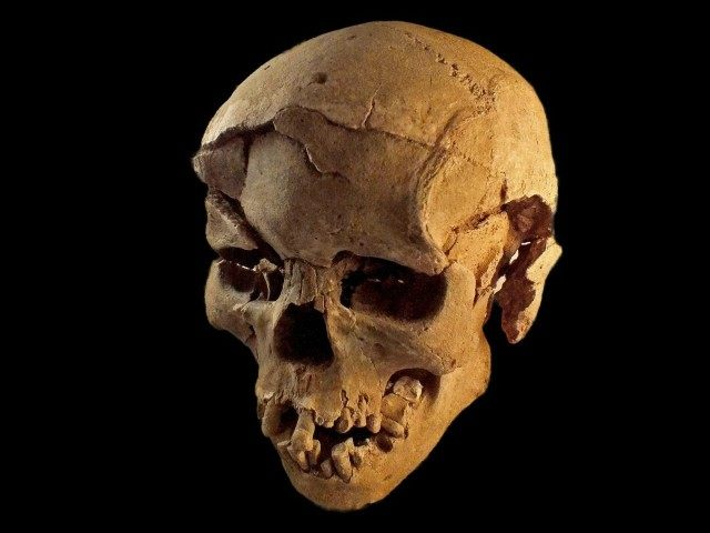 prehistoric-skull-discovered-nataruk-kenya-reuters-640x480