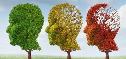 brain-tree-dementia-624x295