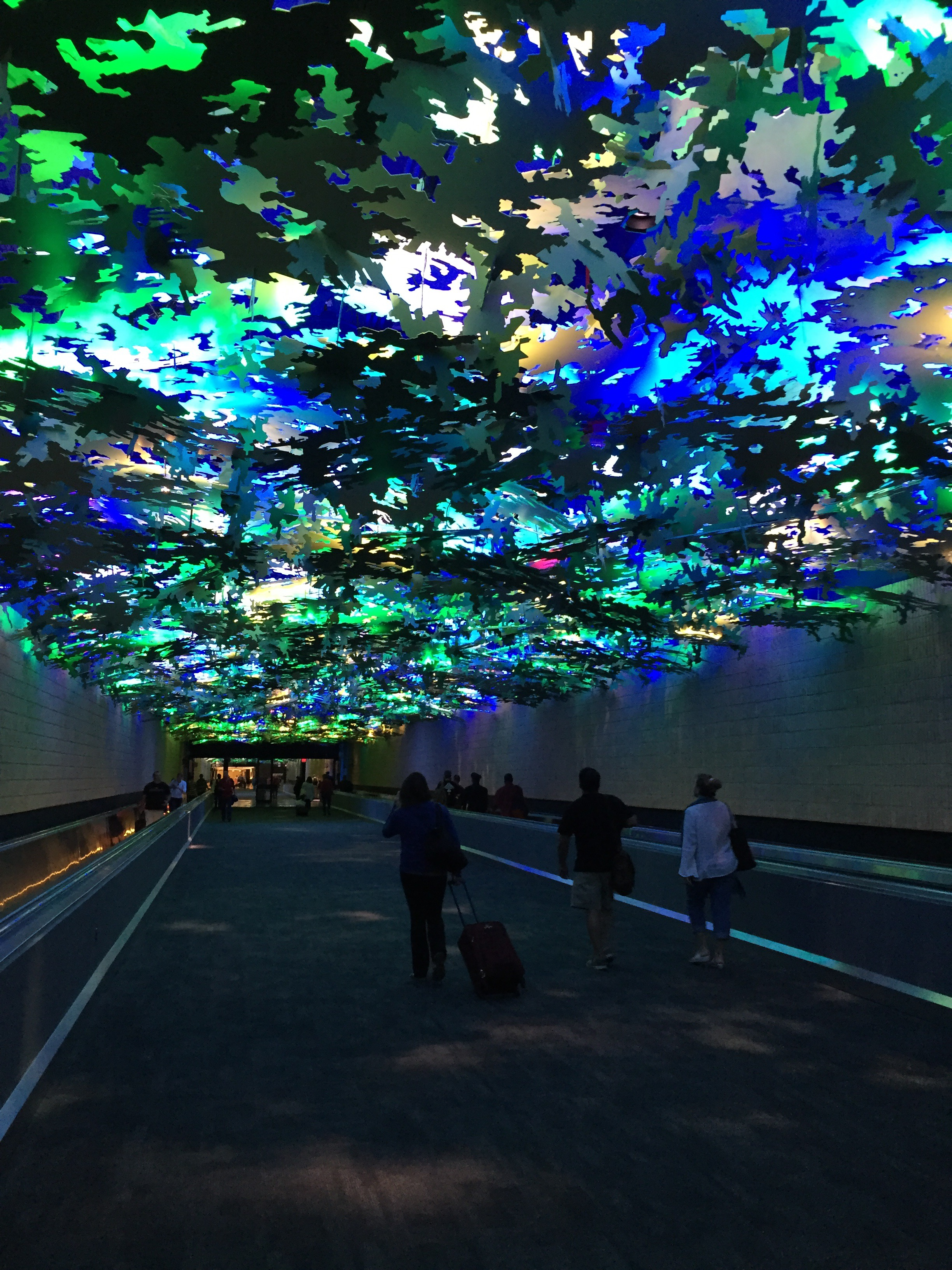 subdued lighting. Walking From Concourse B To A At The Atlanta Airport Takes You Through This Walkway, Which Features Leaf-like Objects Overhead, Subdued Lighting, Lighting