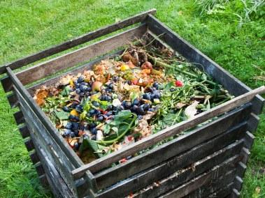 compost-488988734