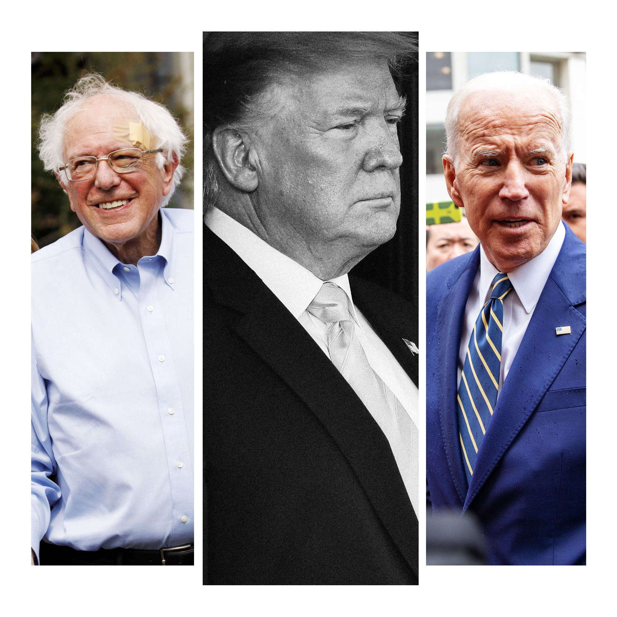 bernie-and-joe-like-donald-trump