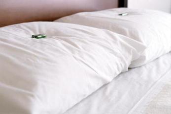 mint_pillow